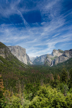 Yosemite National Park in California - image #455591 gratis