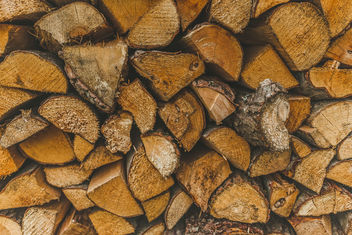 Background of Firewood - Free image #456021