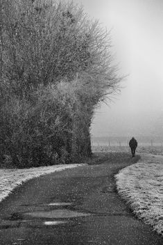 One who walks alone can sometimes reach places that no one has ever reached. - Free image #458011