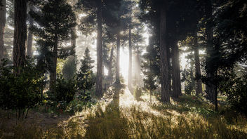 Far Cry 5 / Sunny Day - Free image #458771