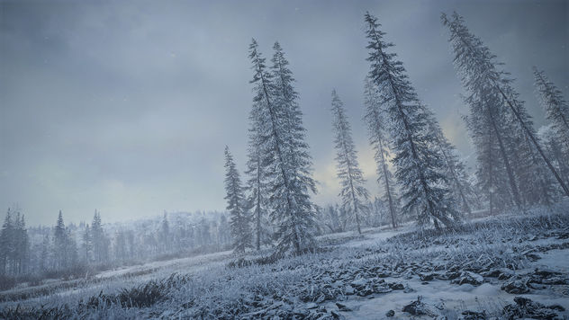 TheHunter: Call of the Wild / Snow Is Coming In - Free image #459121