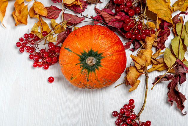 Top-view-ripe-orange-pumpkin-with-viburnum-berries-and-dry-leaves.jpg - image #464501 gratis
