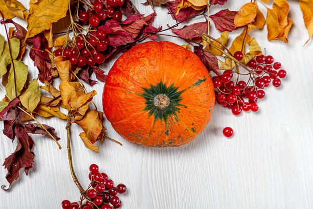Top view ripe orange pumpkin with viburnum berries and dry leaves (Flip 2019) - image gratuit #464511
